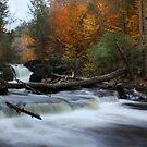 Autumn at Kitchen Creek by Lori Deiter