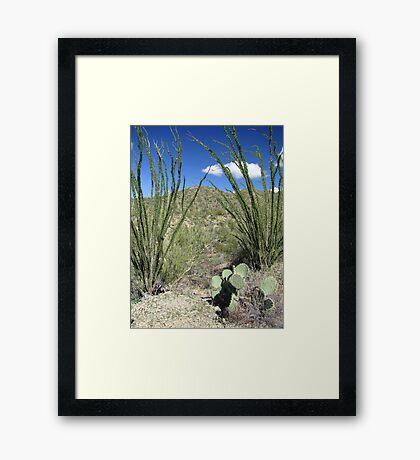 Sonoran Scenery Series ~ 4 ~ Framed Print