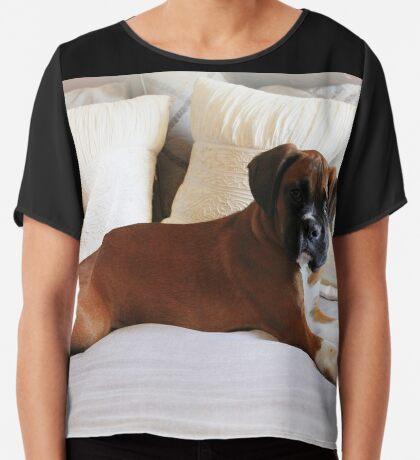 Nicht mein Bett ... sagst du? - Boxer Dogs Series Chiffontop für Frauen