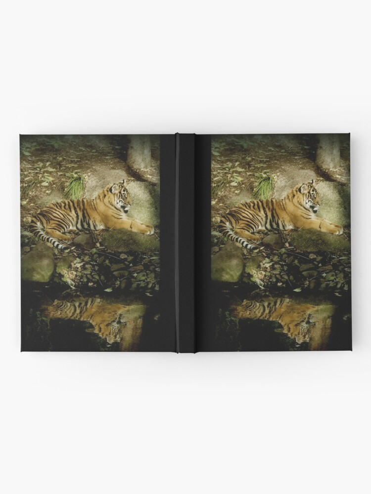 Alternate view of Reflections Hardcover Journal