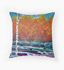 Burleigh Falls Floor Pillow