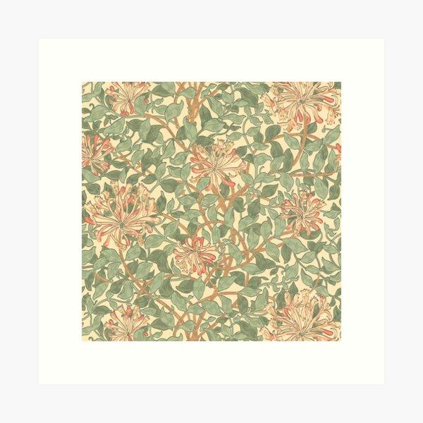 William Morris Madreselva Lámina artística