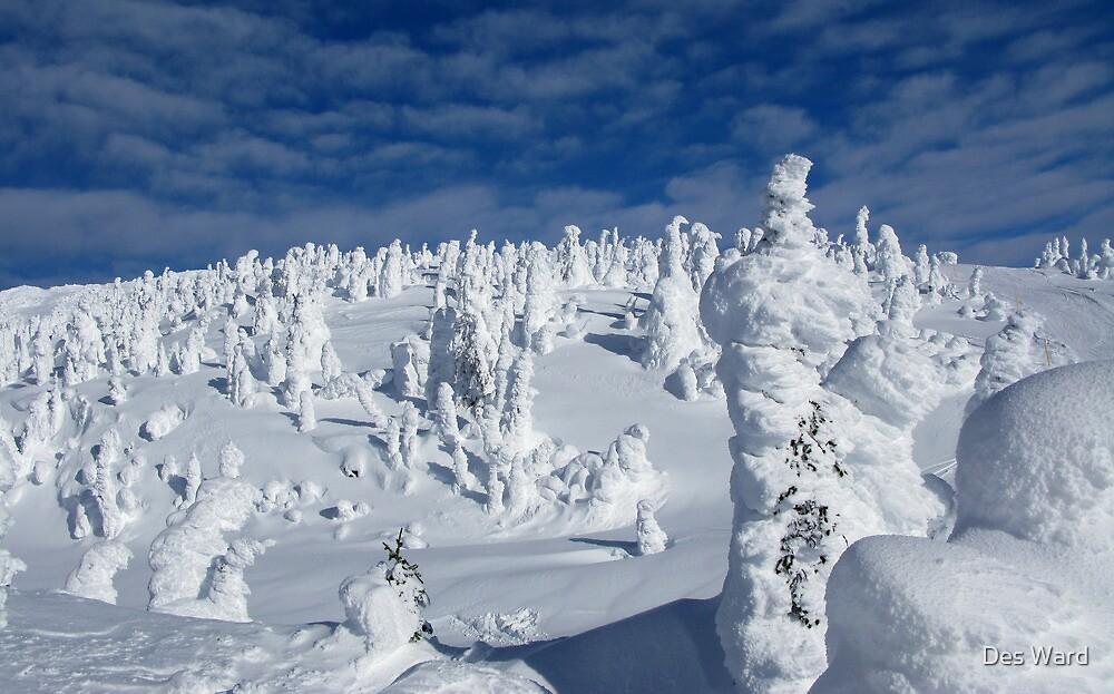 Gem Lake Pines- Big White by Des Ward