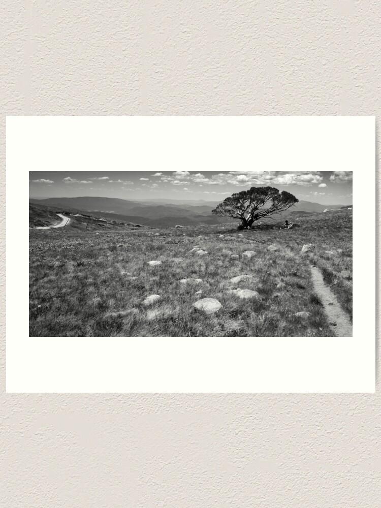 Alternate view of Tree on Mt Stirling, Victoria Art Print