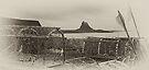 Lindisfarne - Holy Island by David Lewins