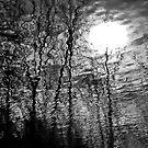 Night Terrors by Tom Vaughan