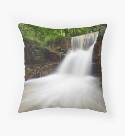 Waterfall on Morrison's Property Throw Pillow