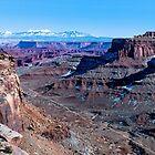 Canyonlands National Park III by Len Bomba