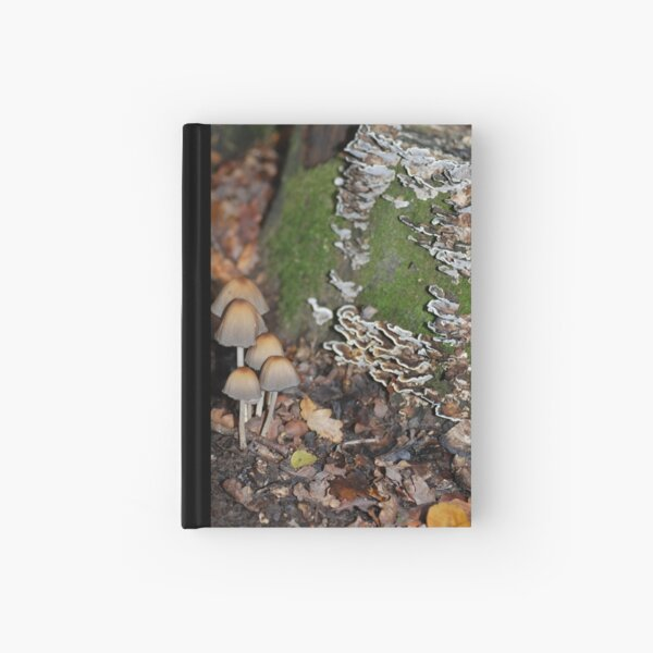 Fungy in Autumn Hardcover Journal