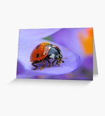 Pollen Lady Greeting Card