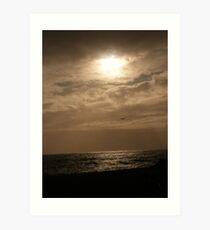 Silver Sun and Seagull Art Print