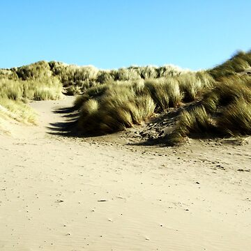 Sand Dunes at Croyde Bay by BeckieMaynard