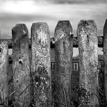 Fence 2 by RGMeyer