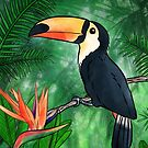 Toucan Illustration by Brittany Hefren