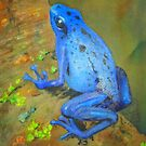 Electric Blue Poison Dart Frog Large Size by icansketchu