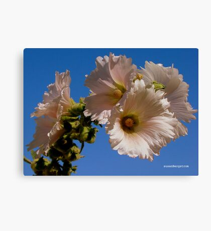 Flowers A'Poppin Canvas Print