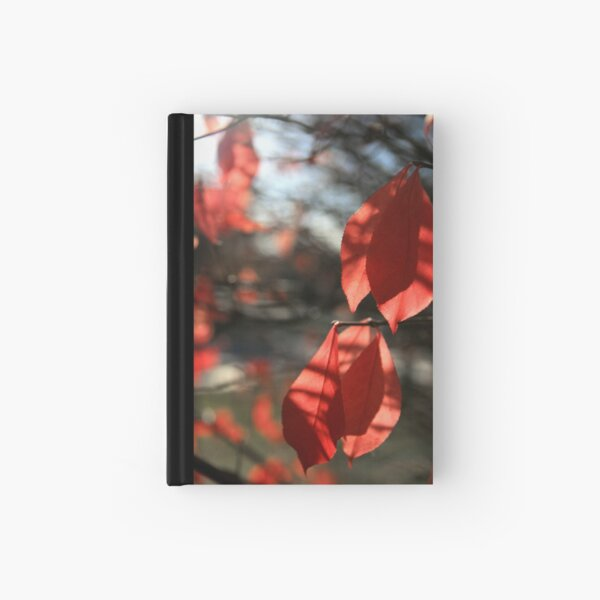 Hanging By A Moment Hardcover Journal