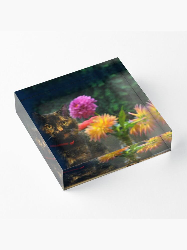 Alternate view of Shelley ~ Acrylic Block