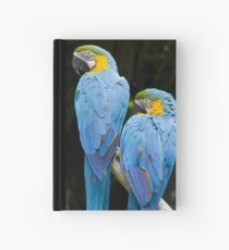 Twins Hardcover Journal