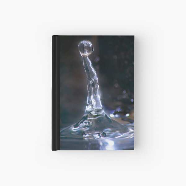 Ness Hardcover Journal