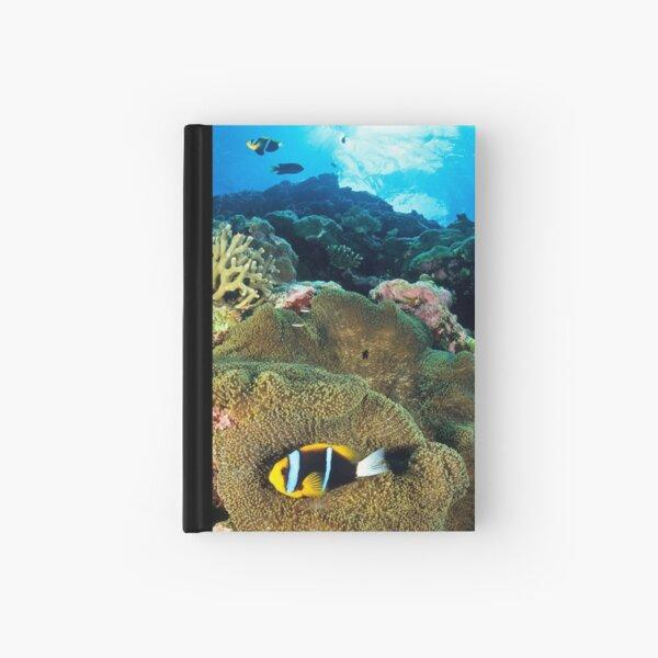 Anemonefish Hardcover Journal
