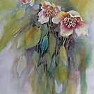 Lenten Roses by bevmorgan