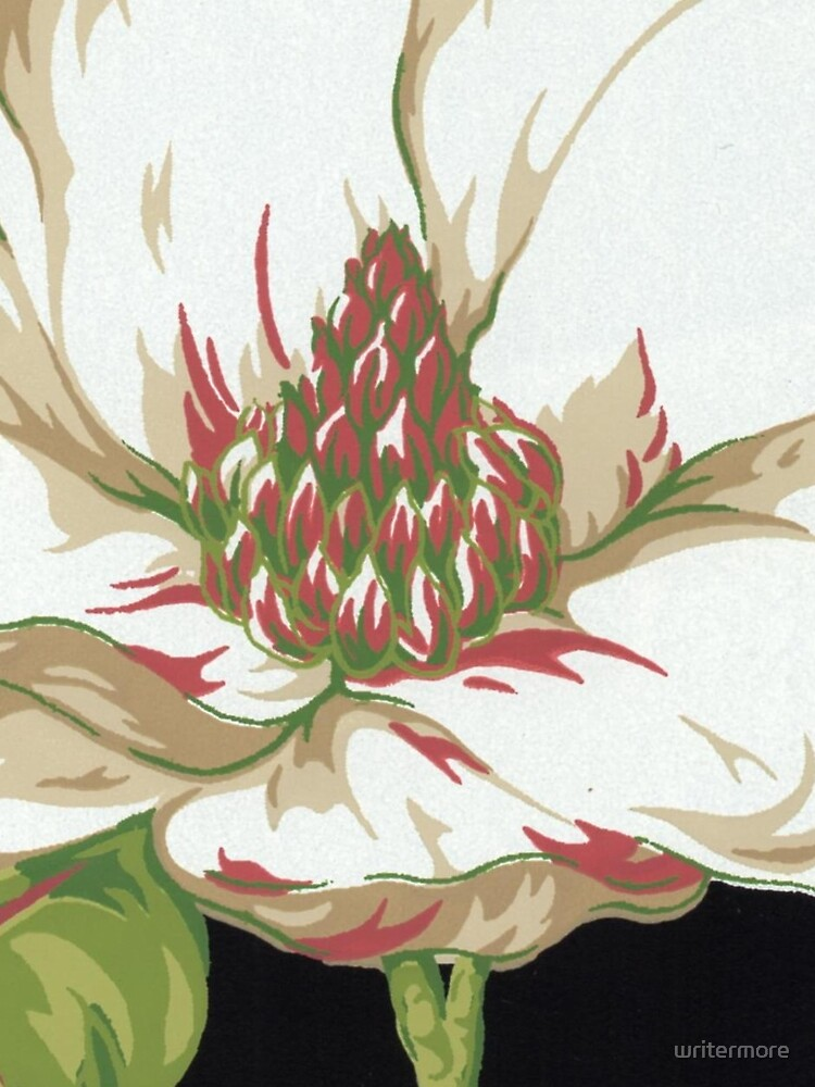 Sweet Magnolia #2 by writermore