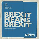 Brexit Pillow by NYET! - a Brexit UK Border Farce