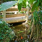 Pond & Footbridge  by ECH52