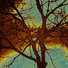Tree Series 01 by Aritheeagle