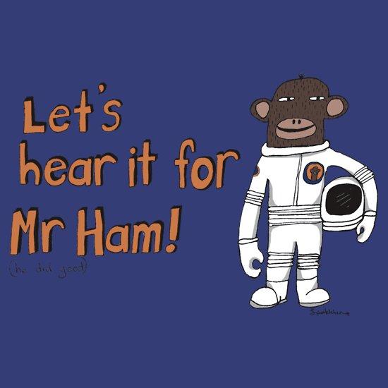 TShirtGifter presents: Mr Ham