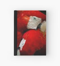 Scarlet Macaws Hardcover Journal
