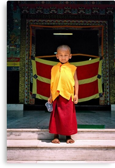 future buddha. northern india by tim buckley | bodhiimages