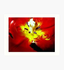 Deeply (Tulip) Art Print