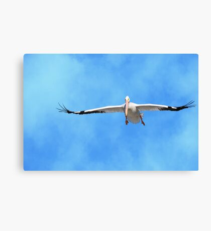 The Dynamics of Lift Canvas Print