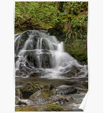 Christie Falls - Lower Basin Poster