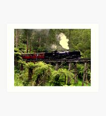 Narrow Gauge Garratt Steam Locomotive Art Print