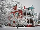 Green Roof Inn by FrankieCat