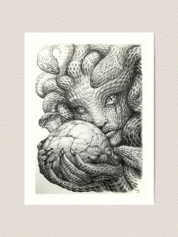 medusa crumbling skull graphite prisma pencil drawing art print by tranquileyez redbubble