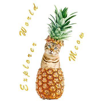 Funny Pineapple Kitten by Eng-Sun