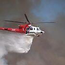 LAFD Fire 1 Griffith Park Aug 16, 2008 by chibiphoto