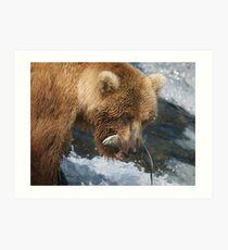 Brown Bear with Salmon Art Print