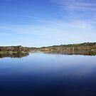 The Tallow Estuary by byronbackyard