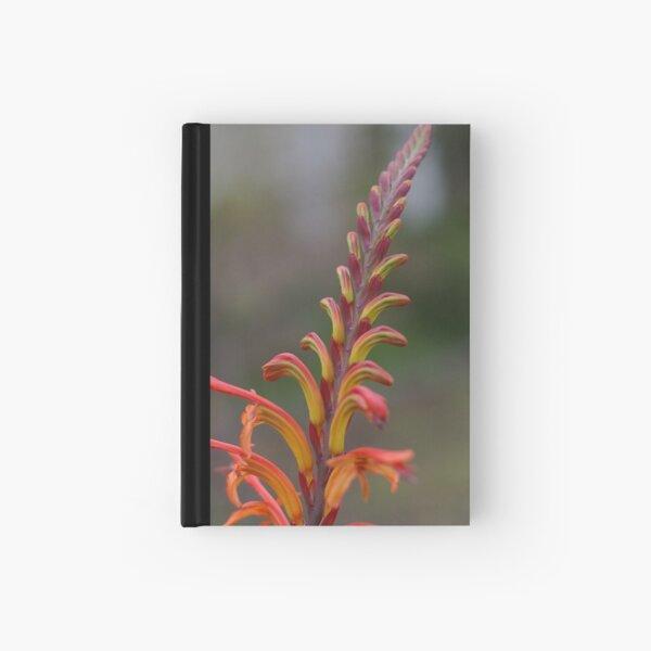 Simplicity Itself Hardcover Journal