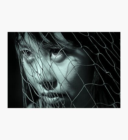 Netted Photographic Print