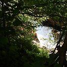 Hiding Water by anasophia