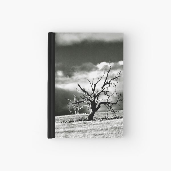 windswept Hardcover Journal