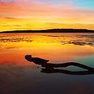 Sunrise Reflections - South Arm, Tasmania by Blackpaw  Photography