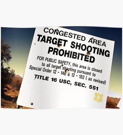 Target Shooting Poster