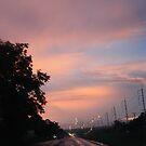 Pattaya to Bangkok Highway by Indrani Ghose